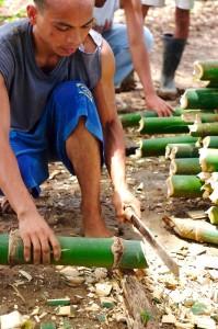 Uomo filippino utilizza il Buning per tagliare il bambù, Agoo, Ilocos, Luzon, Filippine settentrionali