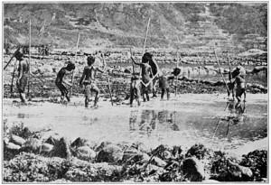 Pescatori Bontoc Igorot
