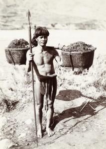 Guerriero Bontoc impugna una lancia Fal-feg mentre trasporta concime per le risaie